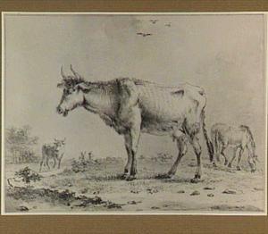 Koeien en paard in een landschap