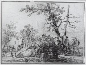Drie koeien bij een boom