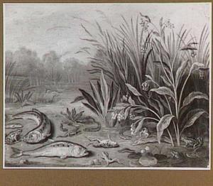 Rivieroever met waterplanten, vissen en kikkers