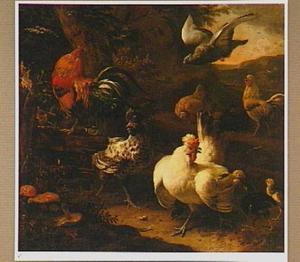 Hoenderhof met een haan, kippen, kuikens en een aanvliegende duif