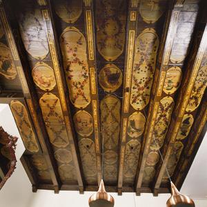Balkenplafond met tekens van de dierenriem