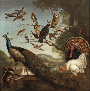 Vogelconcert; Aesopus' fabel van de gestolen veer
