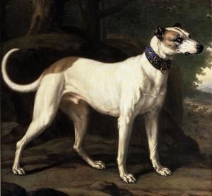Turck, hond van Zweedse koning Karl XI (1655-1697)