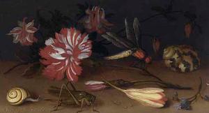 Bloemen, insekten en een schelp op een stenen plint