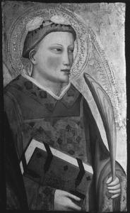 De heilige Stephanus