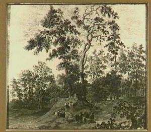 Een groep geiten in een boomrijke omgeving