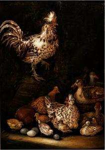 Kippen en eenden op een ef