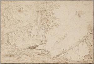 Een bergachtig boslandschap met dennebomen
