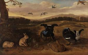 Konijnen en vogels in een heuvelachtig landschap