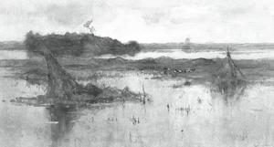 Polderlandschap met eendenfuik