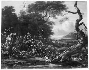 Landschap met dode boom en distels
