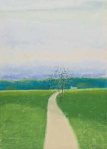 De weg in de velden