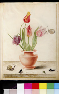 Drie tulpen en een kievietsbloem in een vaas, met insecten en een slak, op een marmeren plint