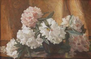 Stilleven met rhododendrons