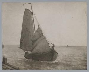 Thuiskomende zeilboot voor de haven
