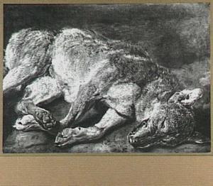 Dode wolf