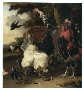 Kippen, hanen en andere vogels in een landschap