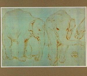 De jonge Indische olifanten Hans en Parkie, behorend tot de menagerie van stadhouder Willem V