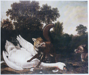 Vossen met dode zwaan