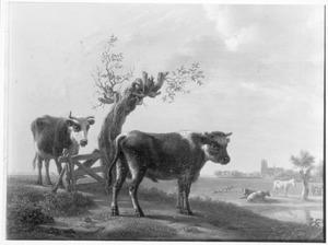 Runderen en ander vee in de weide, Dordrecht aan de horizon