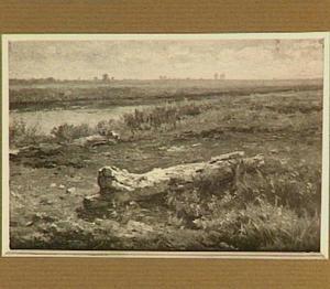 Landschap met boomstam en vaart