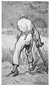 De oogster