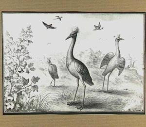 Heuvellandschap met vogels