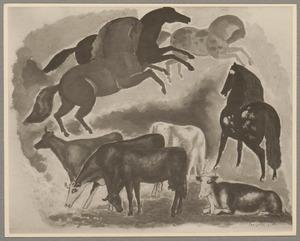 Koeien en paarden