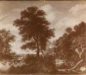 Landschap met veedrijver op een weg langs een waterval