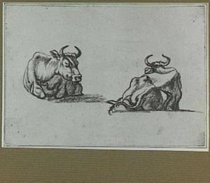 Twee liggende koeien