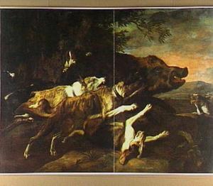 Honden, die een everzwijn opjagen