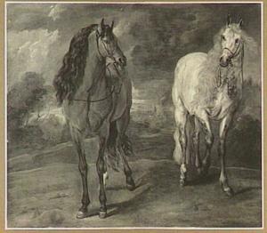 Twee paarden in een landschap