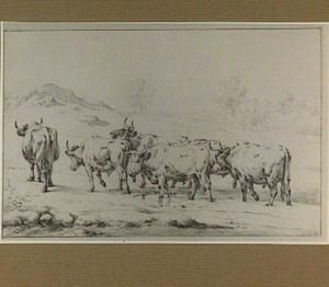 Landschap met stieren