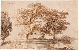 Bomen bij een vijver