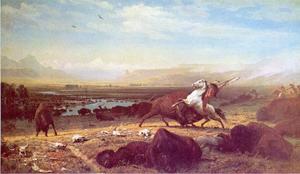 De laatste van de buffalo's