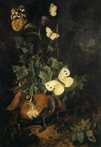 Bosstileven met vlinders, hadedis en slang