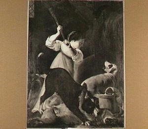 Meisje in een stal met vier blaffende en vechtende honden