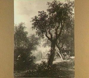 Het Haagse Bos met Huis ten Bosch