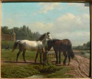 Paarden bij een houten hek; op de achtergrond mogelijk Kasteel Het Oude Loo te Apeldoorn