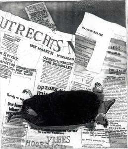 Dode mol op het Utrechts nieuwsblad