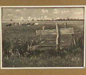 Een houten hek in een weide met grazende koeien