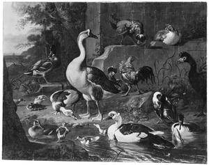 Ganzen, eenden en kippen in een landschap met ruïnes