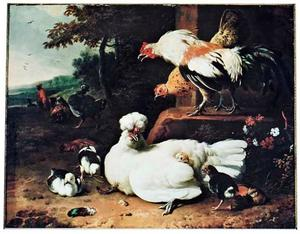 Kippen en kuikens in een landschap