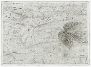 Hopblad op houten tafel