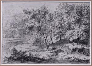 Heuvelachtig boslandschap met rivier