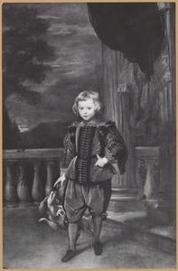 Portret van een onbekende jongen uit de Doria familie