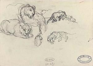 Schetsblad met studies van leeuwin en jongen