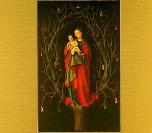 Onze-Lieve-Vrouwe van de droge boom