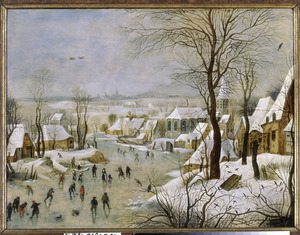 Winterlandschap met vogelknip