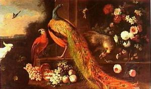 Pauwen, een kaketoe en een papegaai naast een stenen